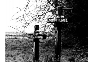 Roadside Memorials: The Ongoing Controversy